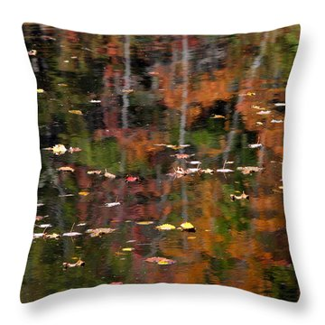 Messalonskee Reflection 1 Throw Pillow