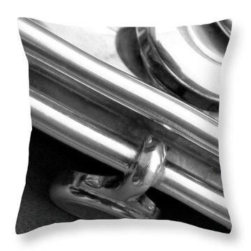 Throw Pillow featuring the photograph Metallic  by Lisa Phillips