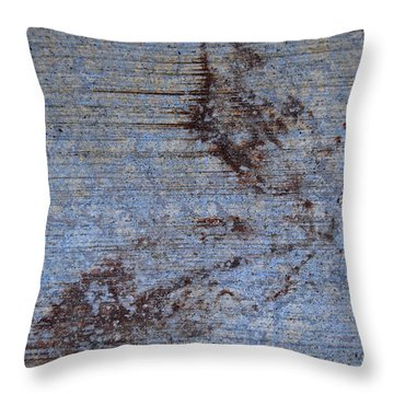Throw Pillow featuring the photograph Metamorphosis by Jani Freimann