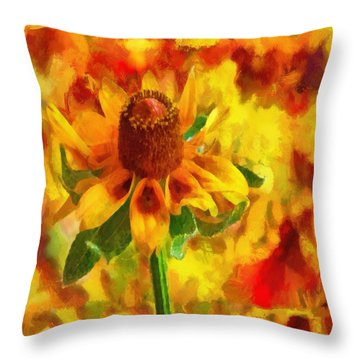 Mexican Hat Dance Throw Pillow