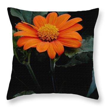Throw Pillow featuring the photograph Mexican Sunflower by James C Thomas
