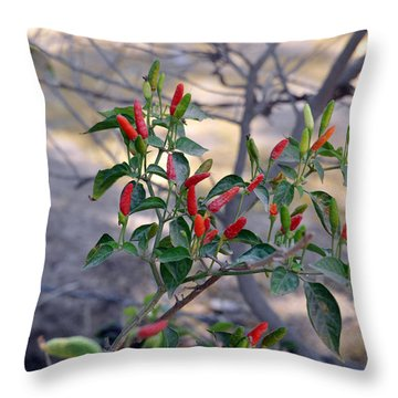 Mexico Red Throw Pillow by Rebecca Parker