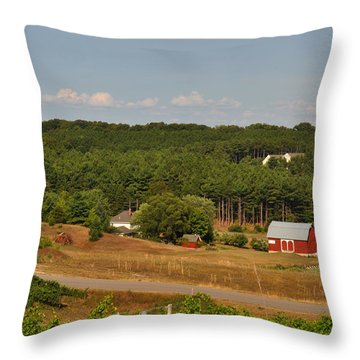 Michigan Vineyard Throw Pillow by Diane Lent