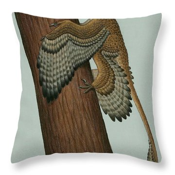 Microraptor Gui, A Small Theropod Throw Pillow by Heraldo Mussolini