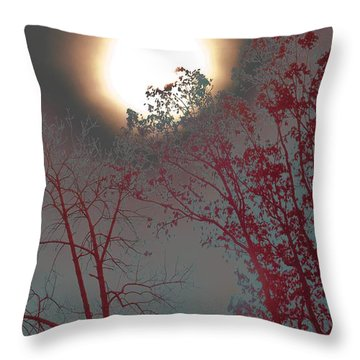 Mid-afternoon Sun Throw Pillow