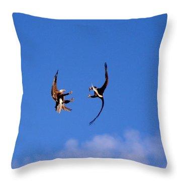 Mid Air Mating Dance Throw Pillow