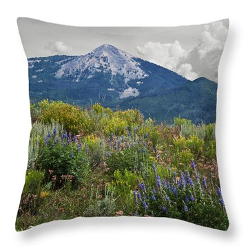 Mid Summer Morning Throw Pillow by Daniel Hebard