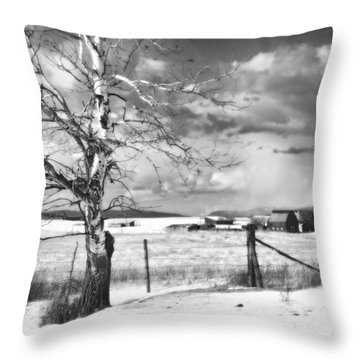 Mid-winter Moonlight Throw Pillow by Theresa Tahara