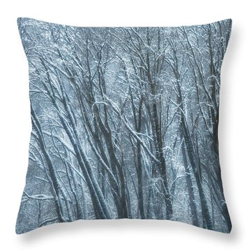Mid-winter Storm Throw Pillow by Jonathan Nguyen