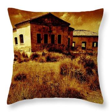 Midday Sanctuary Throw Pillow