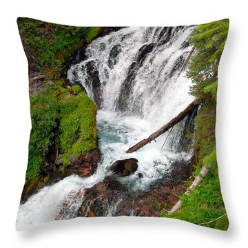 Middle Of Red Blanket Falls Throw Pillow by Teri Schuster