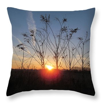 Middle Of The Field Sunrise Throw Pillow