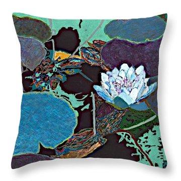 Midnight Moonglow Throw Pillow by Allan P Friedlander