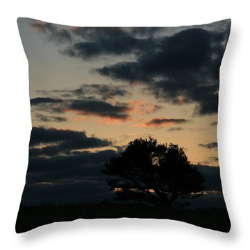 Farm Pasture Midnight Sun  Throw Pillow by Neal Eslinger