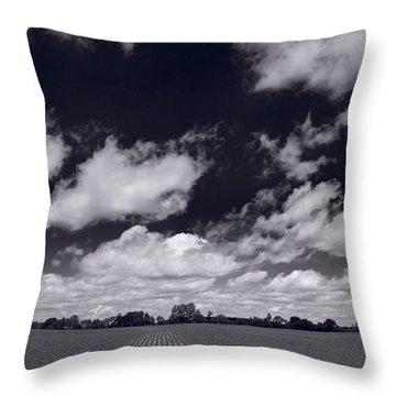Midwest Corn Field Bw Throw Pillow by Steve Gadomski