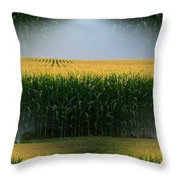 Midwest Gold Throw Pillow by Luther Fine Art