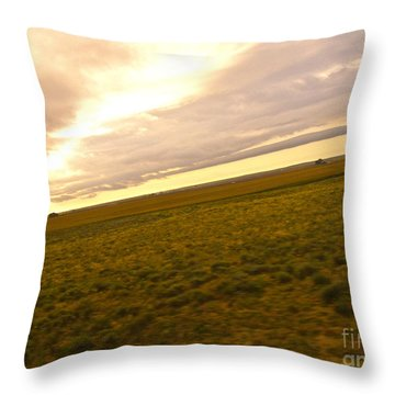 Midwest Slanted Throw Pillow