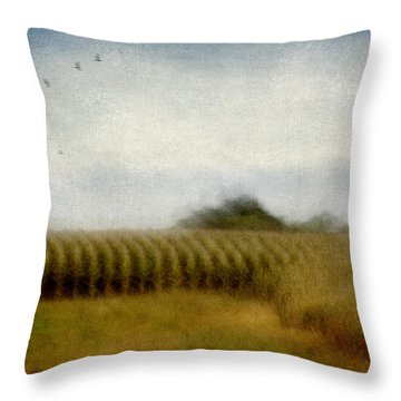 Midwestern Drive-by Corn Fields Throw Pillow