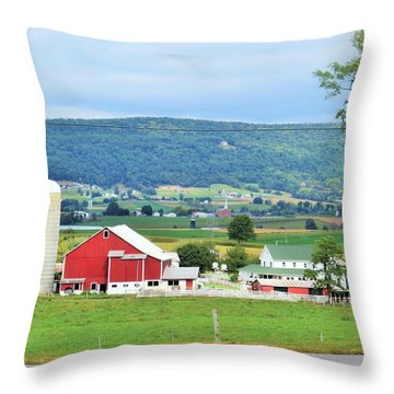 Mifflin County Pa Farm Throw Pillow by Jeanette Oberholtzer