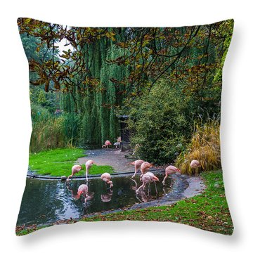Mighty Legs Throw Pillow