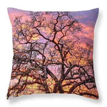 Mighty Oak Tree At Sunset Throw Pillow
