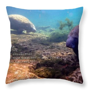 Mighty Things Throw Pillow