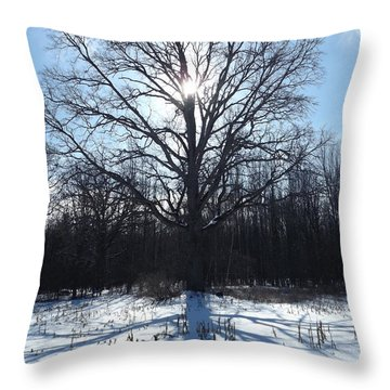 Mighty Winter Oak Tree Throw Pillow