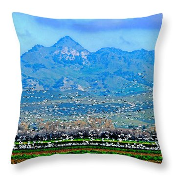 Migrating Birds Over Sutter Wilflife Refuge Throw Pillow