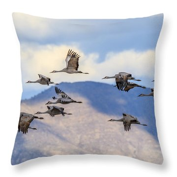 Migration Throw Pillow by Beverly Parks