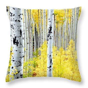 Miles Of Gold Throw Pillow