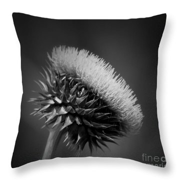 Milk Thistle Bw Throw Pillow