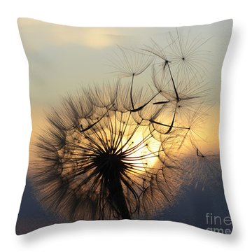 Milkweed 5 Throw Pillow by Bob Christopher