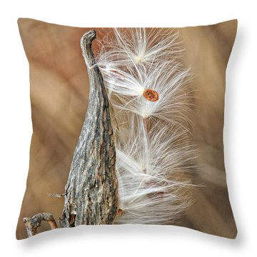 Throw Pillow featuring the photograph Milkweed Pod And Seeds by William Selander