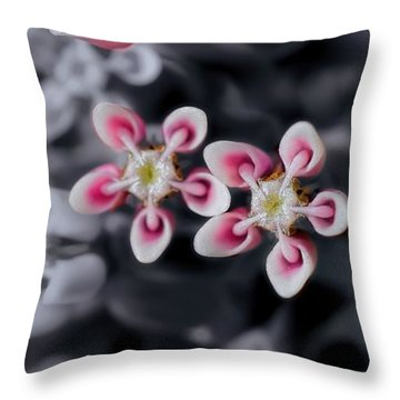 Milkweed Snowflakes Throw Pillow