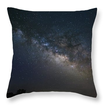 Milky Way Above The Trees Throw Pillow