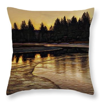 Mill Pond Freeze-d Throw Pillow
