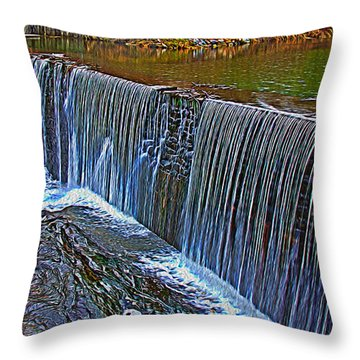 Mill Pond Spillover  Throw Pillow