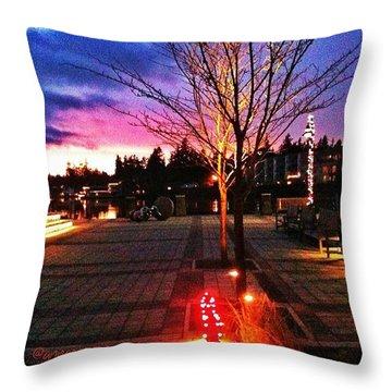 Millennium Park Plaza At Sunset Throw Pillow