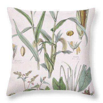 Millet Maize Buckwheat And Taro Throw Pillow