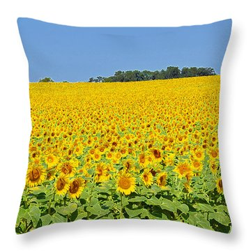 Millions Of Sunflowers Throw Pillow by Eva Kaufman