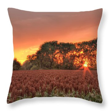 Throw Pillow featuring the photograph Milo by Scott Bean