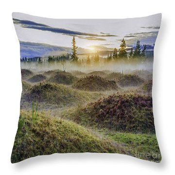 Mima Mounds Mist Throw Pillow