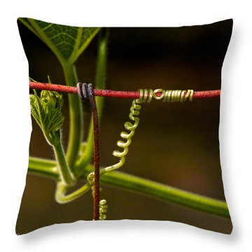 Mimic Throw Pillow by Christopher Holmes