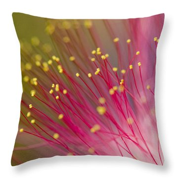 Mimosa Blossom 3 Throw Pillow by Dan Wells