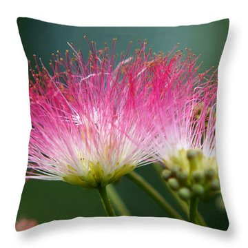 Mimosa Throw Pillow by Kim Pate