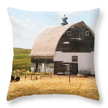 Minden Nebraska Old Farm And Barn Throw Pillow