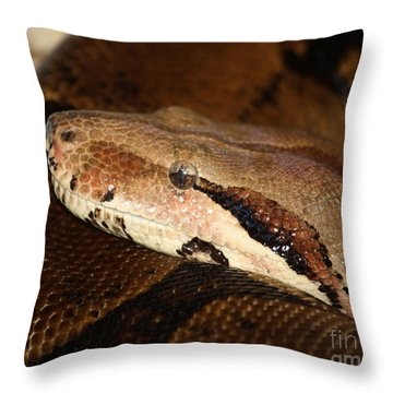 Mindfully Watching Throw Pillow