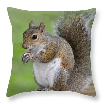 Mine Throw Pillow by Carolyn Marshall