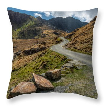 Miners Trial Throw Pillow by Adrian Evans