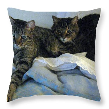 Ming And Sheba Resting  Throw Pillow